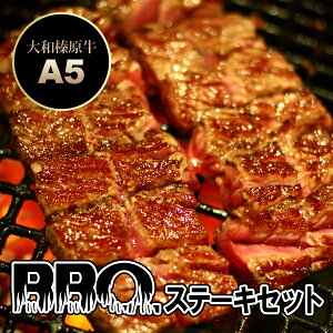 大和榛原牛 BBQステーキセット 600g (イチボ ステーキ:150g×2枚、サーロイン ステーキ:300g) 送料無料牛肉 黒毛和牛 A5 ビーフ ステーキ 焼肉 焼き肉 ヤキニク BBQ RCP