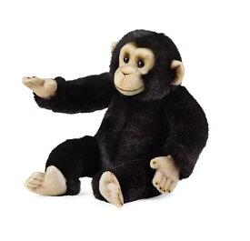 予約商品 US版 ディズニーストア ナショナル ジオグラフィック チンパンジー プラッシュ(ぬいぐるみ)
