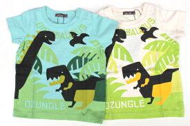 【ゆうパケット可】恐竜Tシャツ/nico hrat (ニコフラート)【RCP】【楽天カード分割】【お買い物マラソンSALE】