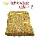 わら 藁 稲わら カットわら 約10kg【農業・園芸用 敷きわら】【天然のマルチング】に