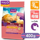 Halo catfood 5