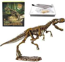 【即納・全国送料無料】 恐竜化石発掘 おもちゃ 発掘キット 恐竜の骨 (T. rex)
