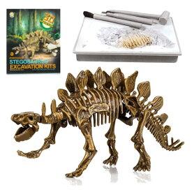 【即納・全国送料無料】恐竜化石発掘 おもちゃ 発掘キット 恐竜の骨 (Stegosaurus)