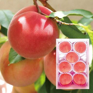 くだもの畑の桃