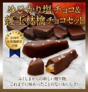 【送料無料】めひかり塩チョコ&紅玉林檎チョコ 各1箱 プレゼント スイーツ 洋菓子 お取り寄せ