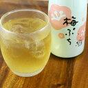 【送料込】微発泡酒梅ぷち6本セット【キャッシュレス5%還元対象】ふくしまプライド