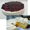 [送料無料/お買い得2ホール][半生生姜チーズケーキ]と[ブルーベリーレアーチーズケーキのセット]/直径14.5/8カット/ブ…