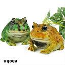 かえる 雑貨 カエルのマグネット【REPTILES MAG】フロッグ マグ L / HORNED FROG ツノガエル 蛙 両生類 爬虫類 文房具…