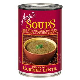 インディアンダルレンティル・スープ 411g