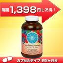 【定期購入】ベリーベリープレミアム カプセル(大/360粒)
