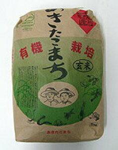 井手さんのお米 秋田こまち玄米 30kg