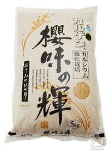 環境こだわり おうみのひかり キヌヒカリ 玄米 5kg