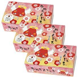 うめえんじぇる 30g(100粒/50包)×3箱セット