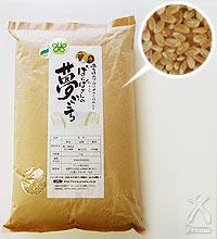 【平成29年産】ばんばさんの 夢ごこち 玄米 5kg