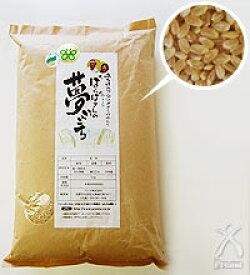 ばんばさんの「夢ごこち」 玄米 5kg