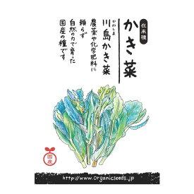 ナチュラルライフステーション 国産・自然農法種子 川島かき菜(9〜10月まき) 約50粒