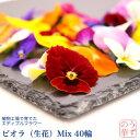 【植物工場産】エディブルフラワー<うずの華> (Mix、40輪)