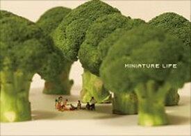 【中古】MINIATURE LIFE /MINIATURE CALENDAR/MINIATURE CALENDAR (単行本(ソフトカバー))