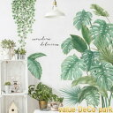 ウォールステッカー 植物 おしゃれ 海 花 木 南国 ヤシの木 カフェ モダン グリーン モンステラ トロピカル ヤシの葉 …