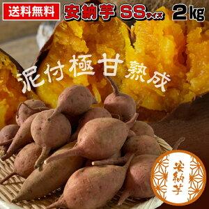 【送料無料 】安納芋 SSサイズ 2kg 食べきりサイズ あんのう芋 蜜芋 さつまいも サツマイモ 鹿児島県産 農家直送 国産 泥付き極甘熟成 スイーツ 取り寄せ