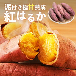 【送料無料 】紅はるか SML混合サイズ 1.5kg 食べきりサイズ 蜜芋 さつまいも サツマイモ 鹿児島県産 農家直送 国産 泥付き極甘熟成 スイーツ 取り寄せ