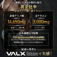 VALX(バルクス)EAA9Producedby山本義徳750gシトラス風味必須アミノ酸