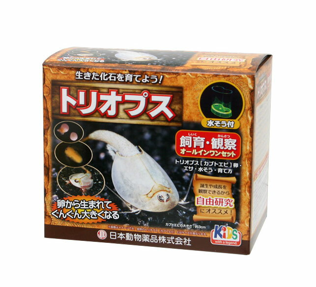 トリオプス飼育セット【エビ伝説】