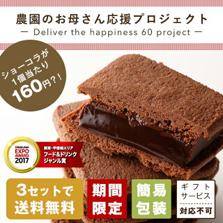 バニラビーンズ応援プロジェクトショーコラ10個入チョコレート詰め合わせお買い得品簡易包装【3セット以上で送料無料】【VB】