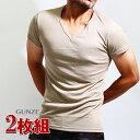GUNZE(グンゼ)YG ベージュインナーtシャツ 2枚組み Vネック 2枚セット ベージュ 肌着 メンズ YV0115 半袖 Yシャツ tシャツ カッター…