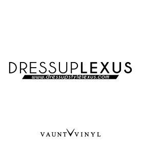 ドレスアップ LEXUS レクサス カッティング ステッカー レクサス エンブレム is nx ls rx / ステッカー 車 シール デカール / シンプル ピンスト ピンストライプ / ドレスアップ カスタム / 10P05Aug17