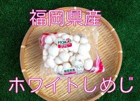ホワイトシメジ【100g】【福岡県産】