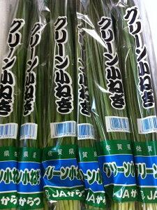 小葱(100g)【九州産:福岡・佐賀・大分】