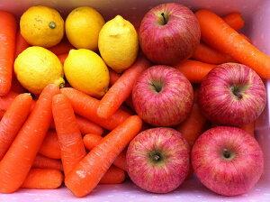 【送料無料】にんじんジュースセット 国産にんじん5kg・国産りんご5玉・国産レモン5個