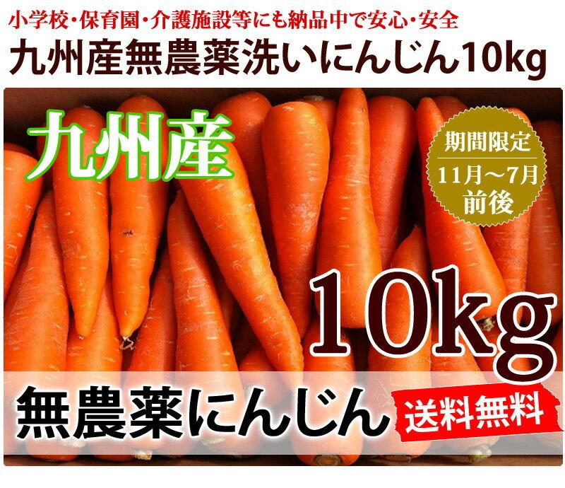 【送料無料】洗いフルーツにんじん10kg ちょっと訳あり 九州産 無農薬