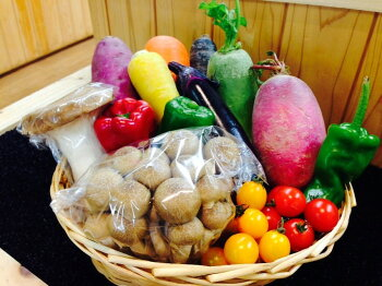 【季節のお野菜ギフト送料無料】ギフト|色どり野菜|旬の野菜|プレゼント