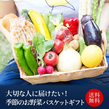 お野菜ギフト〜送料代金込〜