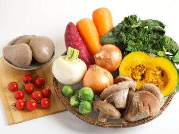 【特選季節のお野菜詰合せ10種】【宅配野菜】【源泉野菜】