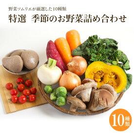 【特選 季節のお野菜詰合せ10種】夏季限定クール便 宅配野菜 厳選野菜