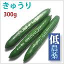 【きゅうり300g】低農薬栽培。【送料別】