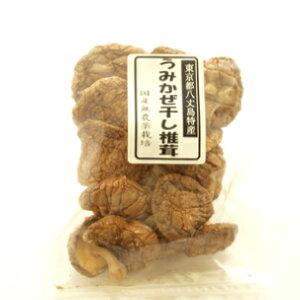 大竜ファーム うみかぜ干し椎茸 30g 1袋