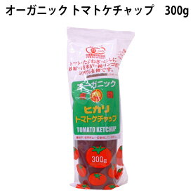 ヒカリ食品 有機トマトケチャップ チューブ入り 300g 1本