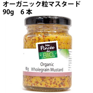 ナイキフーズオーガニック粒マスタード 90g 6本