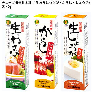 ムソー 旨味本来 チューブ香辛料3種( 生おろしわさび・からし・しょうが)セット 40g 各2本 計6本