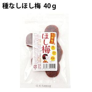 種なしほし梅 40g×5袋 奈良県産の有機梅使用