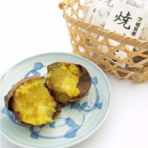茨城農産 焼き芋 シルクスイート 3本
