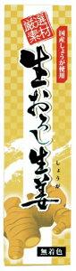 東京フード生おろし生姜(チューブ) 40g 8個