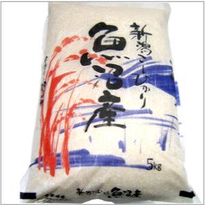 【予約】 魚沼産こしひかり 5kg 1袋