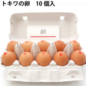 トキワ養鶏 トキワの卵 青森県産 40個