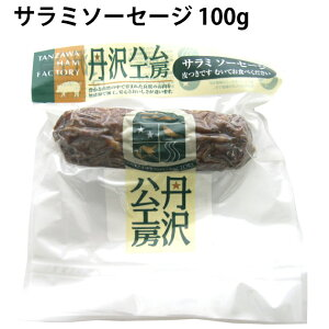 丹沢ハム工房 サラミソーセージ 丹沢高原豚使用 100g×5パック