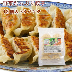 冷凍惣菜 時短ごはん 口福広場 野菜たっぷり餃子  192g 12個×8パック 国産原料使用